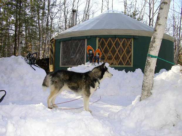 Froat Mountain Yurt with dog