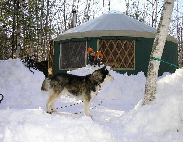 Tyler Brook Yurt in Brownfield